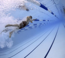 swimmers-swimming-race-competition-5683717.jpeg