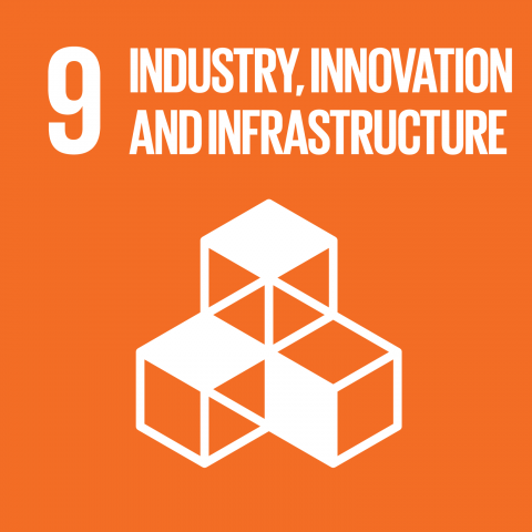 Goal 9 – Innovation and infrastructure