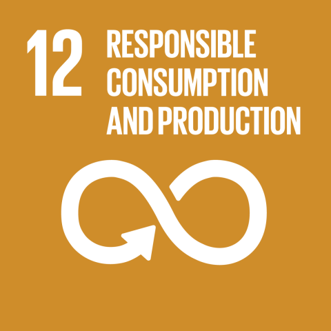 Goal 12 – Responsible consumption and production