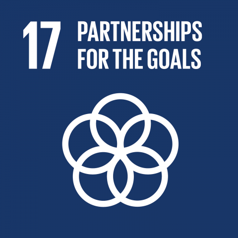 Goal 17 – Partnerships to achieve the goals